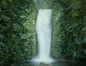 djungelvattenfall
